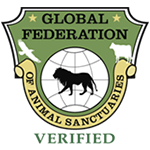 Global Federation Logo