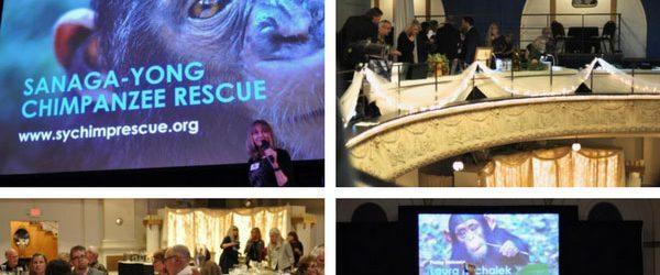 Sanaga-Yong Chimpanzee Rescue Soirée 2018!