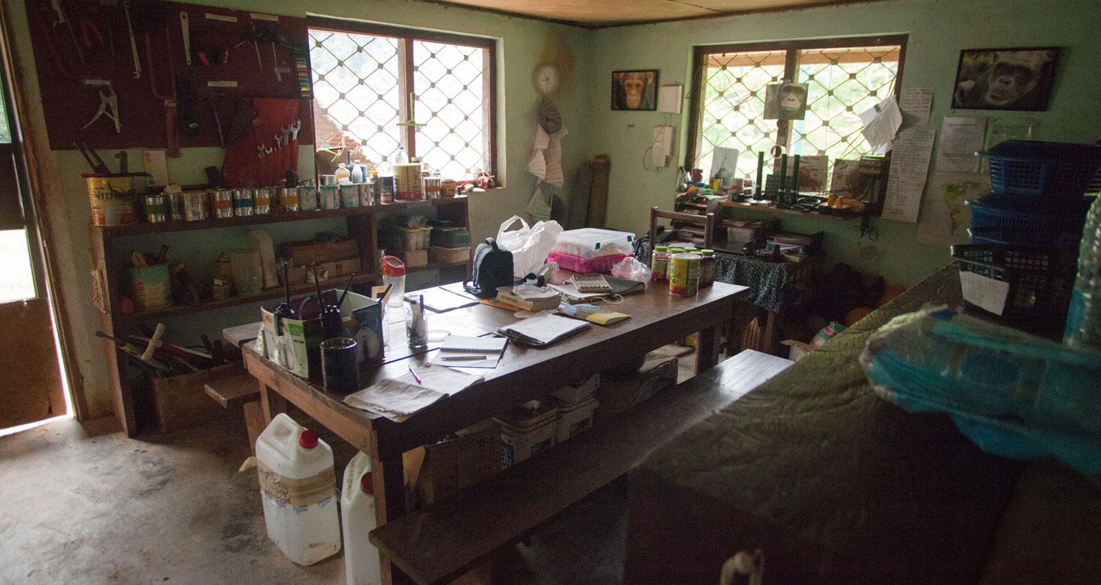 Workroom Dedicated to Rescue Chimpanzee in Africa